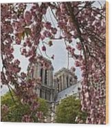 Notre Dame 1 Wood Print by Art Ferrier