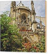Notre Dame De Paris Wood Print by Elena Elisseeva