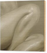 Nude Study Vi Wood Print by John Silver