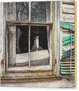 Old Broken Window And Shutter Of An Abandoned House Wood Print by Gary Heller