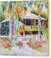 Old Florida House  Wood Print by Joan Dorrill