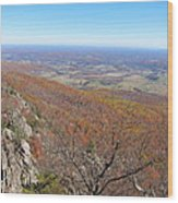 Old Rag Hiking Trail - 121234 Wood Print by DC Photographer