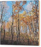 Old Rag Hiking Trail - 121258 Wood Print by DC Photographer