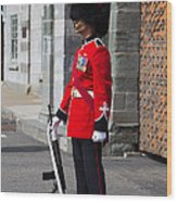 On Guard Quebec City Wood Print by Edward Fielding