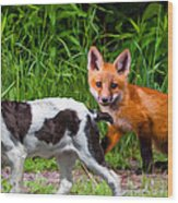 On The Scent Impasto Wood Print by Steve Harrington