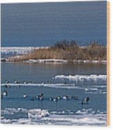 Open Water Wood Print by Skip Willits