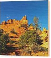 Orange Foreground A Blue Blue Sky  Wood Print by Jeff Swan
