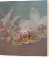 Orchids In The Mist Wood Print by John Kain