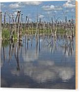 Orlando Wetlands Cloudscape 5 Wood Print by Mike Reid