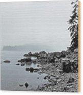Otter Cliffs Wood Print by Joann Vitali