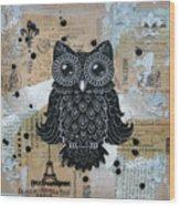 Owl On Burlap1 Wood Print by Kyle Wood