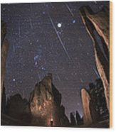 Painting The Needles Under The Geminids Meteor Shower Wood Print by Mike Berenson
