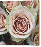 Pale Pink Roses Wood Print by Kathy Yates