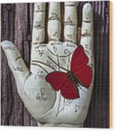Palm Reading Hand And Butterfly Wood Print by Garry Gay