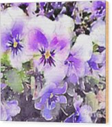 Pansies Watercolor Wood Print by John Edwards