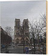 Paris France - Notre Dame De Paris - 011311 Wood Print by DC Photographer
