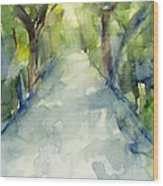 Path Conservatory Garden Central Park Watercolor Painting Wood Print by Beverly Brown