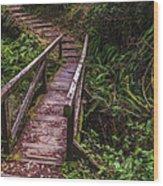 Peaceful Path Wood Print by Loree Johnson
