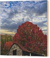 Pear Trees On The Farm Wood Print by Debra and Dave Vanderlaan