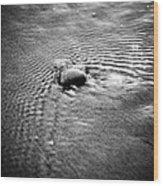 Pebble In The Water Monochrome Wood Print by Raimond Klavins