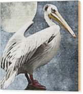 Pelican Night Wood Print by Angela Doelling AD DESIGN Photo and PhotoArt