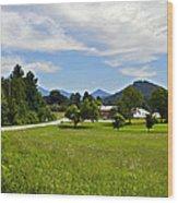 Persimmon Valley Wood Print by Susan Leggett