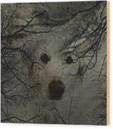 Phantom Dog Wood Print by Shirley Sirois