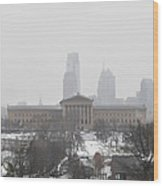 Philadelphia From Lemon Hill Wood Print by Bill Cannon