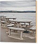 Picnic Tables Wood Print by Tom Gowanlock