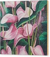 Pink Anthuriums Wood Print by Karin  Dawn Kelshall- Best