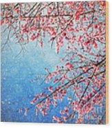 Pink Blossom Wood Print by Setsiri Silapasuwanchai