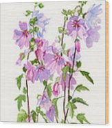 Pink Mallow Flowers Wood Print by Sharon Freeman