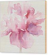 Pink Peony Watercolor Paintings Of Flowers Wood Print by Beverly Brown