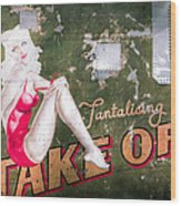 Pinup Girl - Aircraft Nose Art - Take Off Anne Wood Print by Gary Heller
