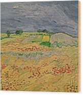Plain At Auvers Wood Print by Vincent Van Gogh
