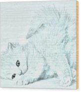 Playful Kitty Wood Print by J D Owen