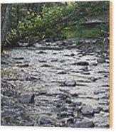 Poconos Gentle Stream Wood Print by John Telfer
