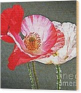 Poppies  Wood Print by Chris Berry