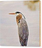 Portrait Of A Great Blue Heron Wood Print by Scott Pellegrin