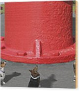 Postcards From Otis - The Hydrant Wood Print by Mike McGlothlen