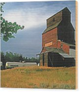 Prairie Sentinel Wood Print by Terry Reynoldson