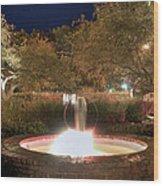 Prescott Park Fountain Wood Print by Joann Vitali