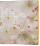 Pretty Blossom Wood Print by Natalie Kinnear