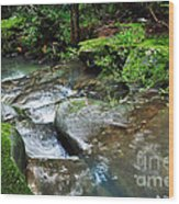 Pretty Green Creek Wood Print by Kaye Menner