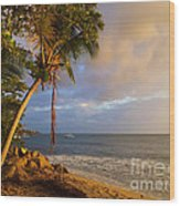 Puerto Rico Palm Lined Beach With Boat At Sunset Wood Print by Jo Ann Tomaselli