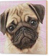 Pug Portrait Wood Print by Greg Cuddiford