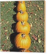 Pumpkins In A Row Wood Print by Anonymous