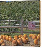 Pumpkins On The Farm Wood Print by Joann Vitali