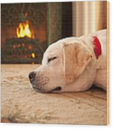 Puppy Sleeping By A Fireplace Wood Print by Diane Diederich