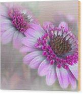 Purple Blooms Wood Print by David and Carol Kelly